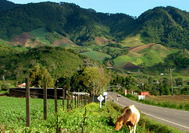 Panama Rundreise | Cerro Punta von Boquete