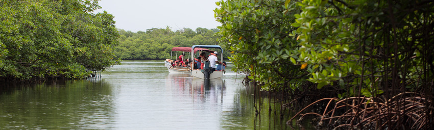 Panama Reisen   Exkursion mit dem Boot in Gamboa
